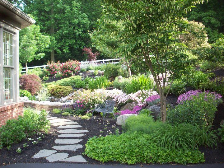 Landscaping With Evergreen Shrubs : Best images about beautiful landscape on gardens