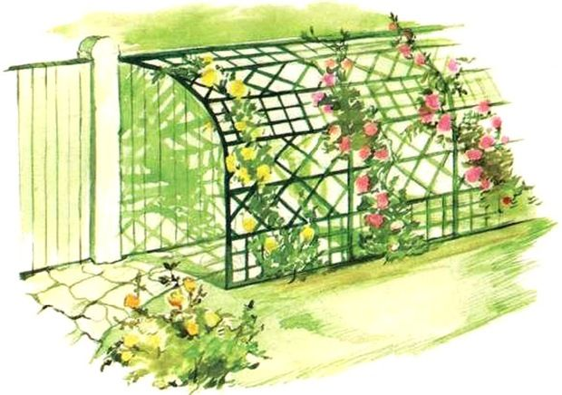 Берсо на даче своими руками. Особенности оформления сада при помощи берсо