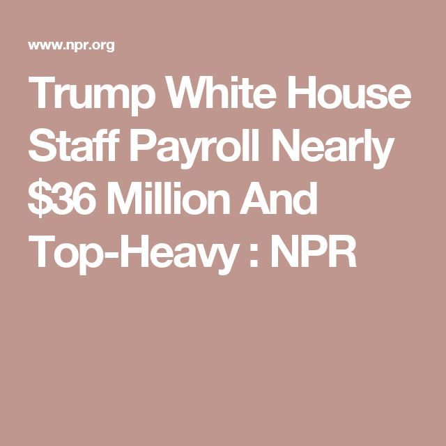 day 162 - Trump's payroll is smaller than Obama's was in 2016 by about a hundred staffers. But the median salary for his staff is higher, with 22 employees making the top salary of $179,700 per year.