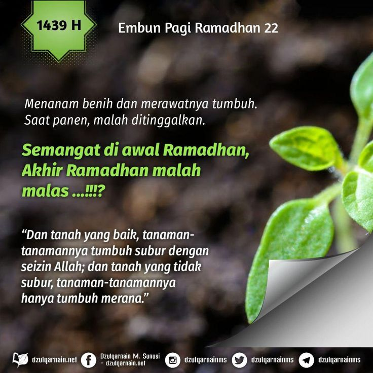 Pin By On Islam Kesuburan Panen Bijak