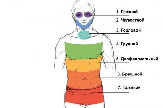 Методика Вильгельма Райха для избавления от мышечных зажимов