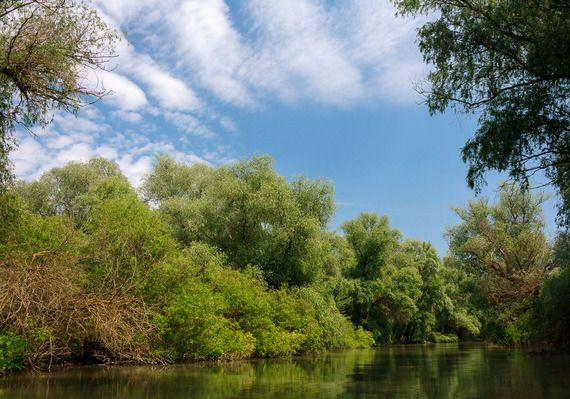 just you and mother nature  25 Reasons to Visit Romania (1): Danube Delta