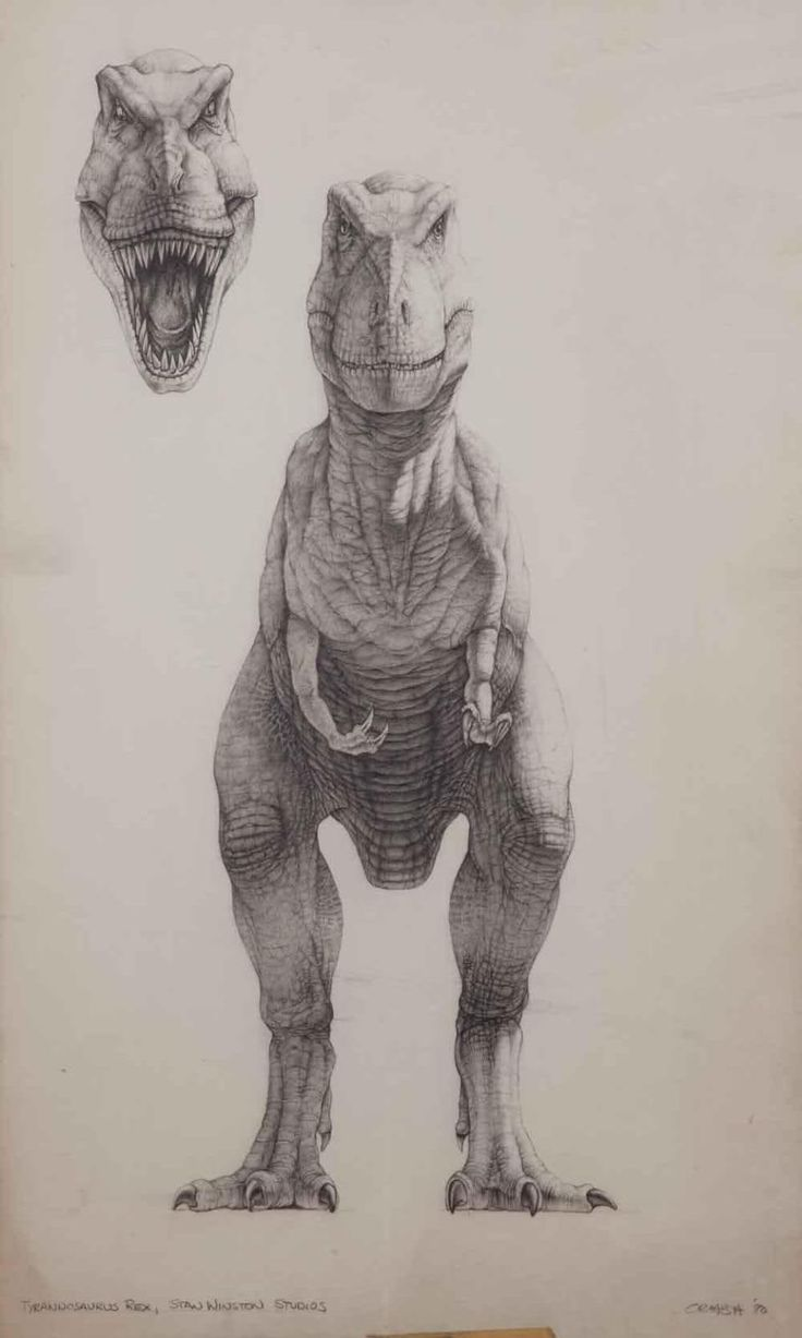 || CHARACTER DESIGN REFERENCES | Find more at https://www.facebook.com/CharacterDesignReferences if you're looking for: #art #character #design #model #sheet #illustration #best #concept #animation #drawing #archive #library #reference #anatomy #traditional #draw #development #artist #how #to #tutorial #animal #reptiles #dino #dinosaurs #crashmcreery #conceptart #jurassicpark #dinosaur #trex