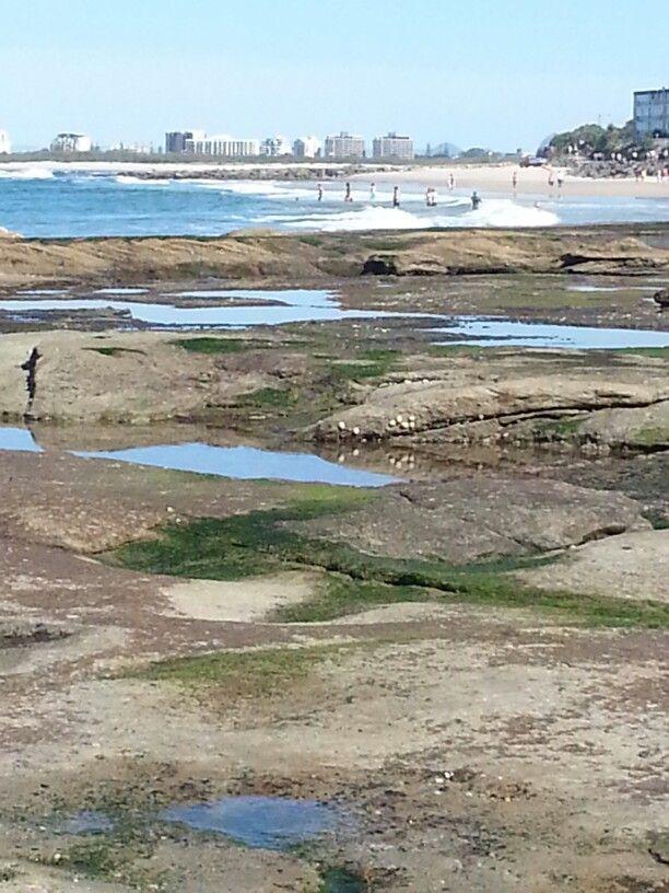 Rock pools,  Kings Beach Caloundra Qld