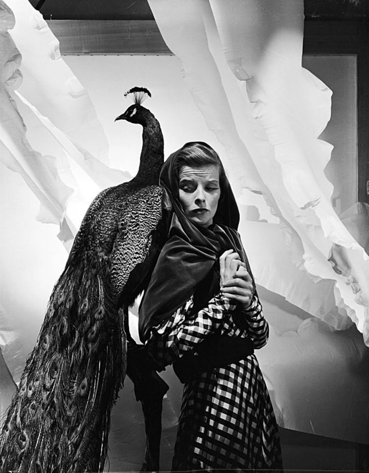 OMG! I NEED THIS PHOTO! Framed, encased in glass, and hanging up on my wall! STAT! Katherine Hepburn and peacock. Photo: Cecil Beaton