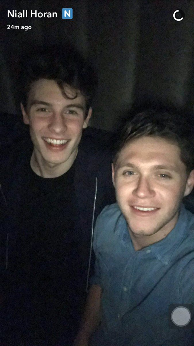 Shawn Mendes and Hiall Horan 2017