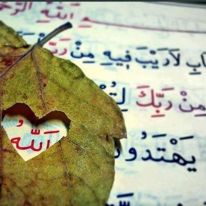 Allah Sadece KaLbi Verir.  İçini Sen DoLdurursun...   Şems-i Tebrizi (k.s)