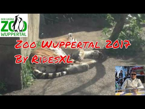 Review Zoo Wuppertal 2017