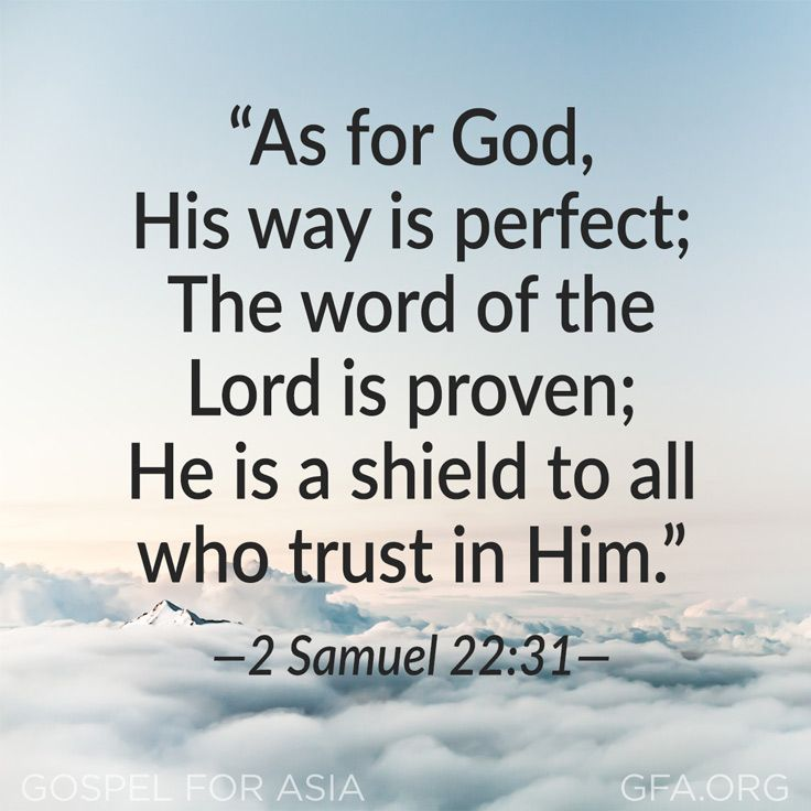 """As for God, His way is perfect; The word of the Lord is proven; He is a shield to all who trust in Him."" —2 Samuel 22:31"