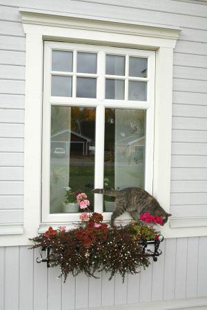 Spröjs | Traryd fönster Flaggfönster med spröjs måste vi ha nångång i framtiden! Brädfodringen kan jag också tänka mig!