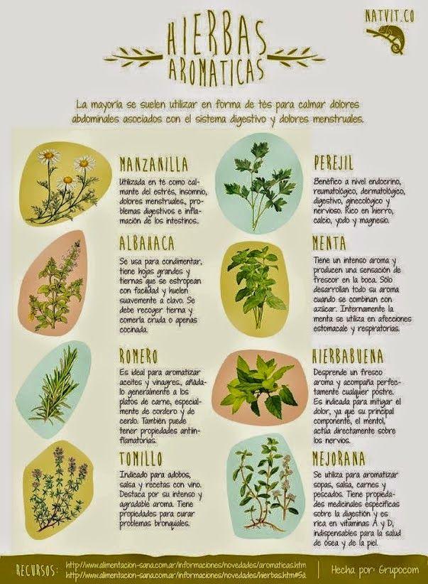 Recetas, salud y bienestar: Hierbas aromáticas... ¿para qué sirven?