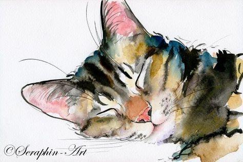 2011-06-190Katze Aquarell Zeichnung