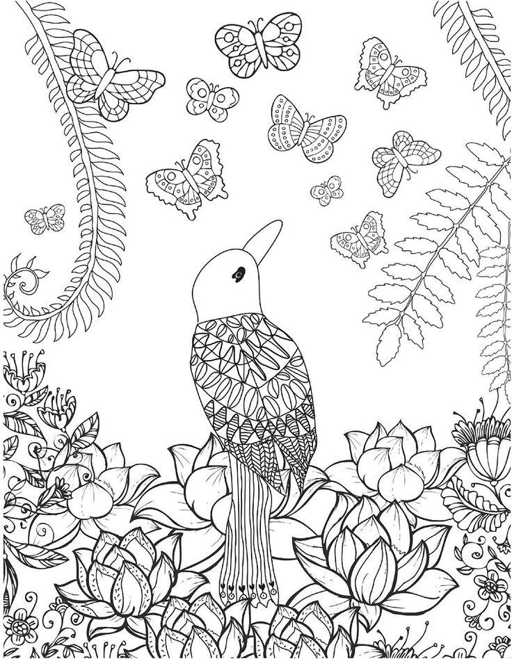 Dream Catcher A Soul Birds Journey By Christina Rose