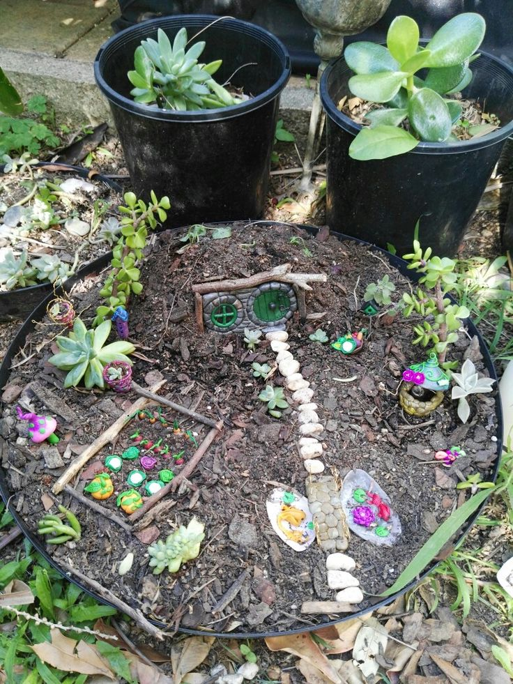 Partially completed fairy garden