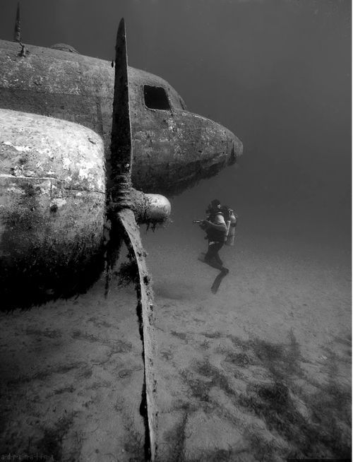 Great image, provenance unknown. All over the web with no attribution. WWII wrecked plane and diver. via lost in America