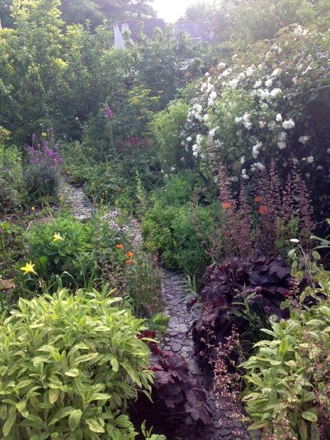 alysfowler_garden3