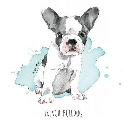French Bulldog - Illustration by Armelle Tissier