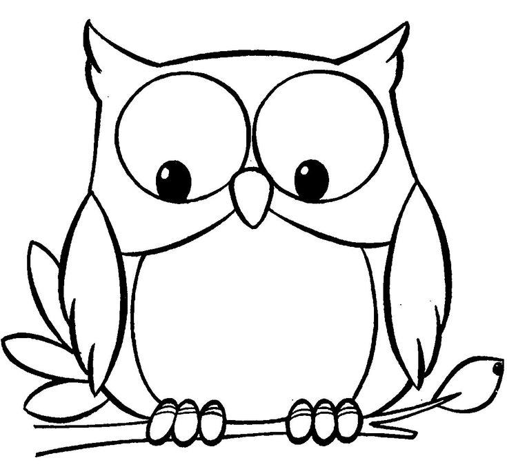 owl engachment  eule malen malvorlage eule eule