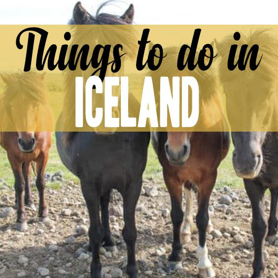 See and do more in Iceland from TheKittchen.com Food and Travel Blog