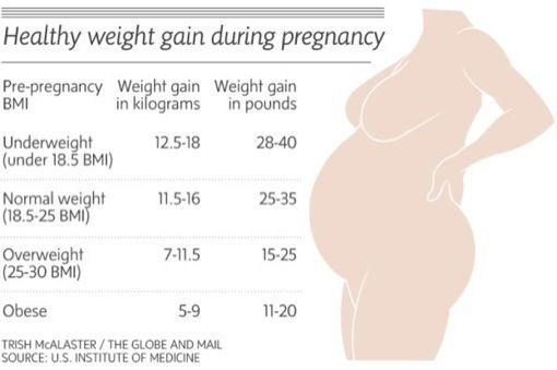 weight gain chart in pregnancy   – My Brady Boys