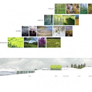 Section Idea-  Also another beautiful way to lay out my pictures - especially my Nature-Mand-made patterns pictures