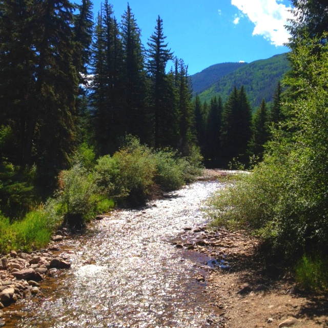 11 best gore creek vail colorado images on pinterest for Fly fishing vail colorado