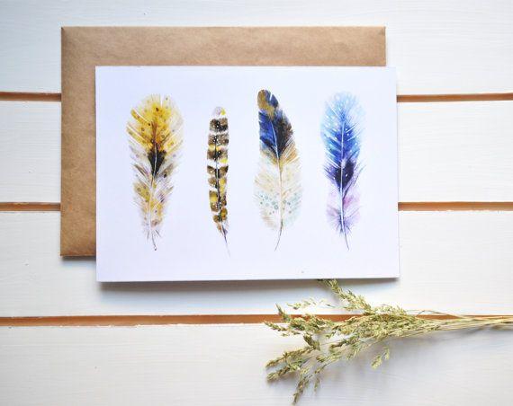 plumage illustration