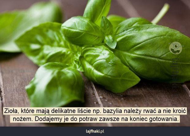 Jak kroić zioła? - Zioła, które mają delikatne liście np. bazylia należy rwać a nie kroić  nożem. Dodajemy je do potraw zawsze na koniec gotowania.