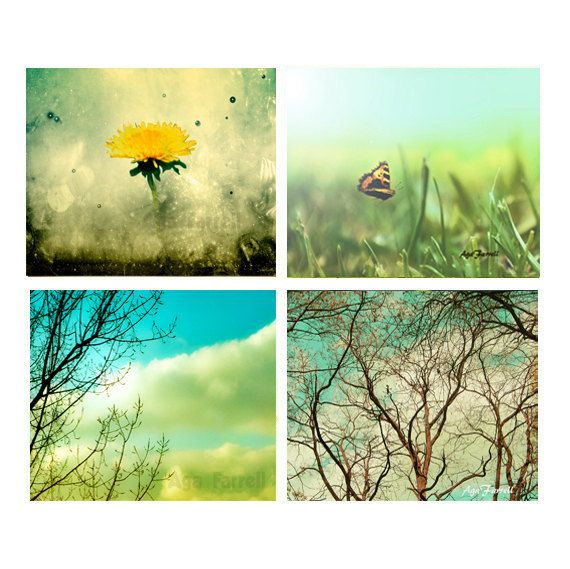 Colourful Art Set of 4, Teal Prints, Teal Wall Art, Yellow, Turquoise, Green, Summer Prints, Nature Photos, Summer Wall Art on Etsy, $33.00