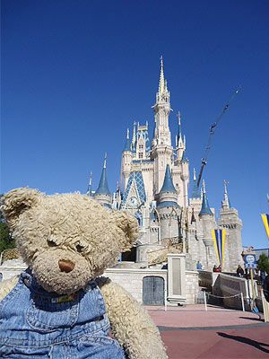 Lost Teddy Bear Tours Disney World Before Heading Home to Alabama