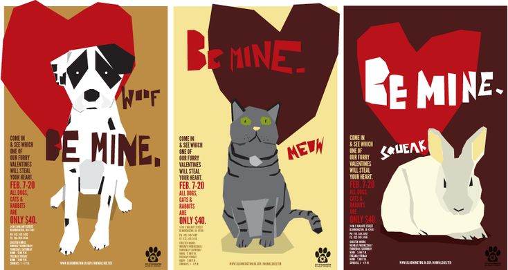 Bloomington Animal Shelter - Larry Buchanan Design