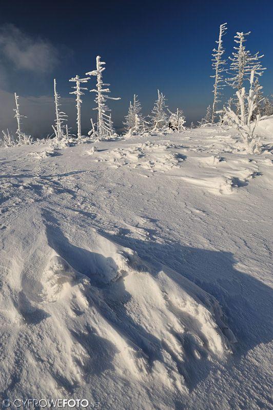 Skrzyczne, Szczyrk zdjęcie zimowe