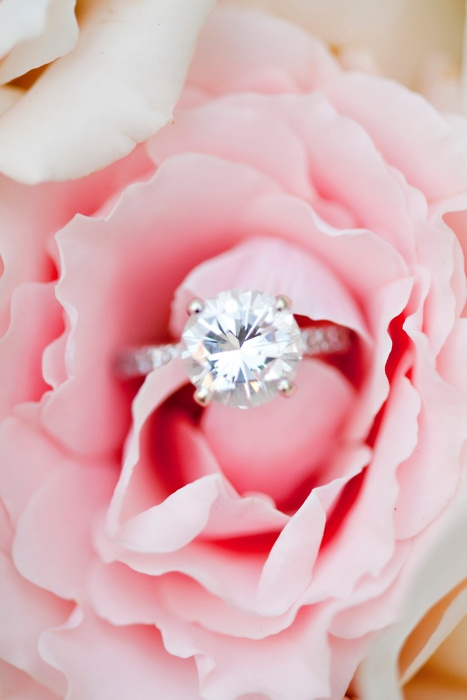 Gorgeous!: Diamonds Wedding Rings, Pink Flowers, Propo Ideas, Diamonds Rings, Future Husband, Pink Rose, Dreams Rings, Diamonds Bands, Engagement Rings