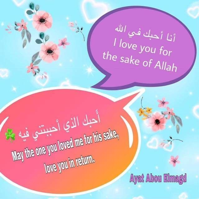 Pin By Violet On English Arabic Sentences Learning Arabic Article Grammar