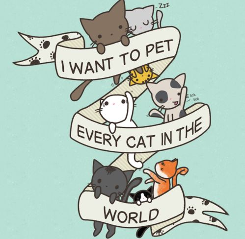 All the cats.