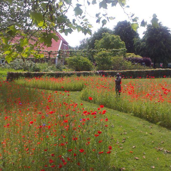 Tuincamping Entourage   Bijzonder kamperen Groningen  Het sanitair is mooier dan bij menigeen thuis, met vloerverwarming, handdoekjes, bloemen en uiteraard, kunst. Ook het gastenkeukentje wat vrij gebruikt mag worden, in de voormalige boerderij, is tiptop verzorgd. De gastvrijheid van Debora wordt geprezen als hartelijk, warm en royaal. De verse biologische groente uit haar eigen moestuin en scharreleieren van de kippen biedt ze graag aan. De grote tafel bij de veranda, deels overkapt…