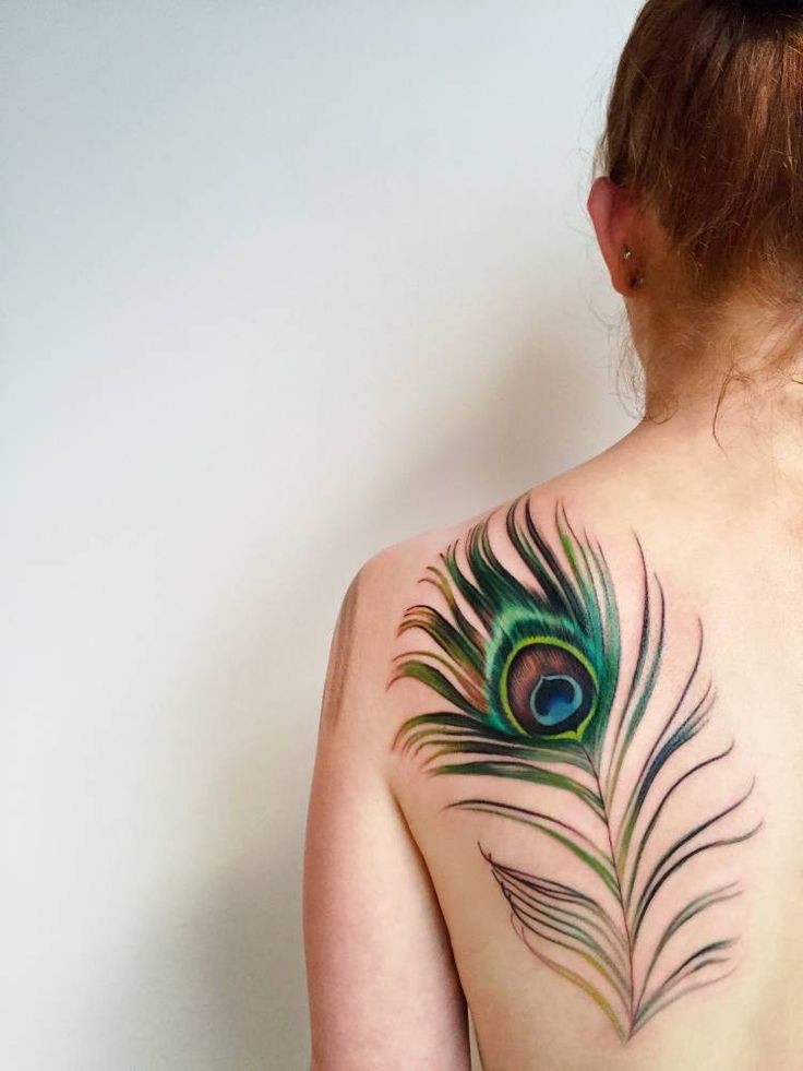 Peacock feather tattoo on the left shoulder blade. Tattoo Artist: Amanda Wachob