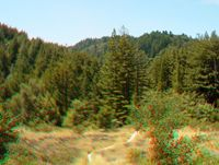Sanborn Park