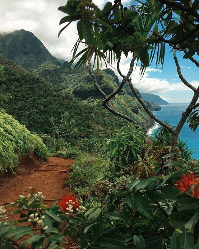 From the trail today on the na pali coast. Kauai, Hawaii. Babe we hiked this…