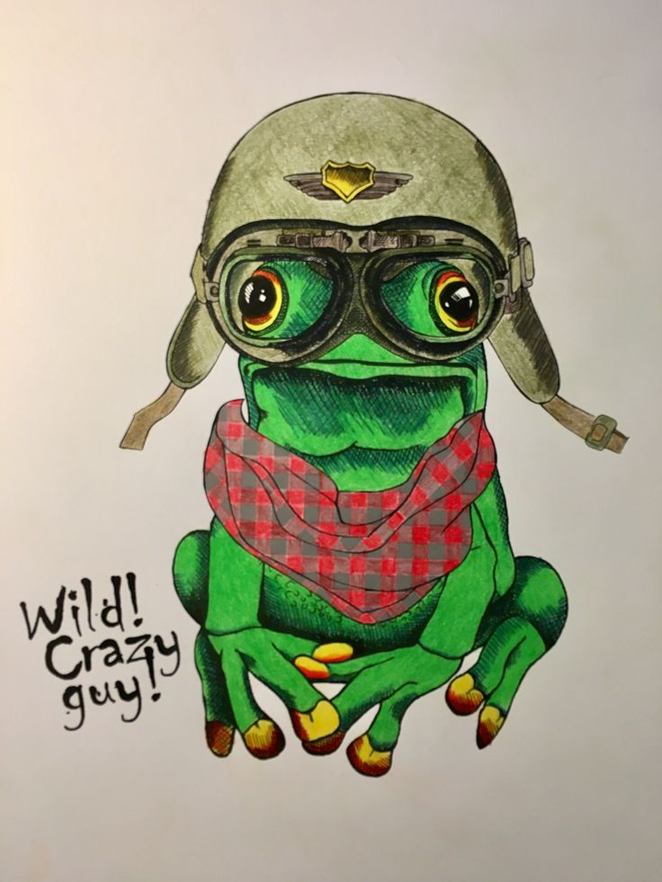 Crazy animals frog