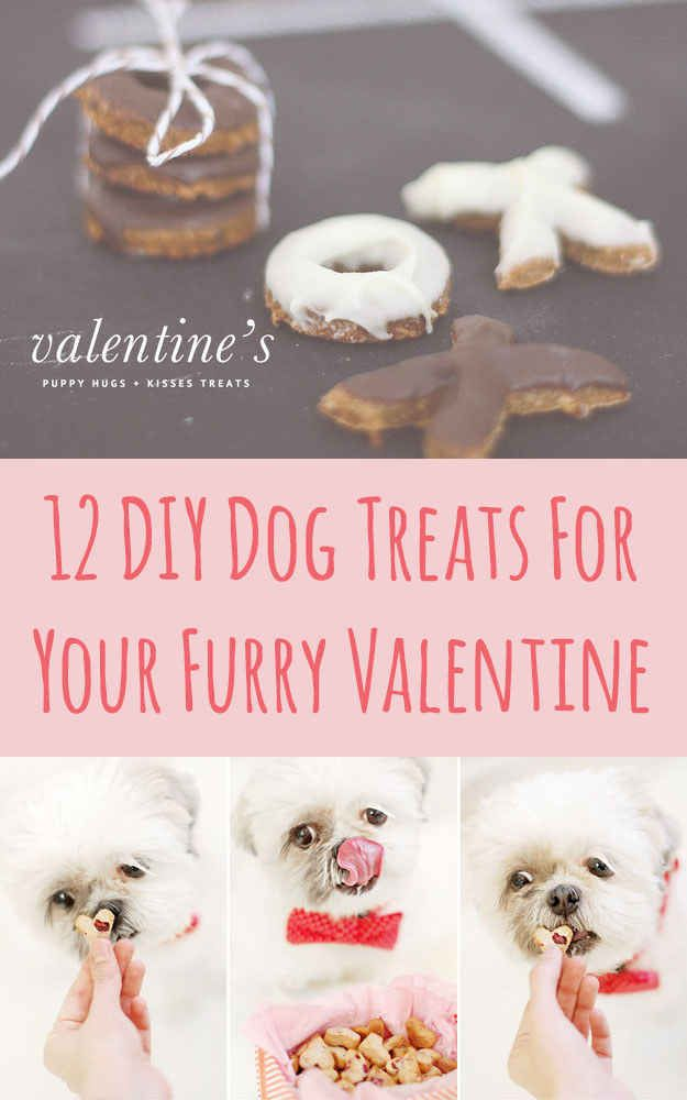 12 DIY Dog Treats For Your Furry Valentine