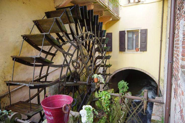 Ye Olde Mill - Borghetto, Italy