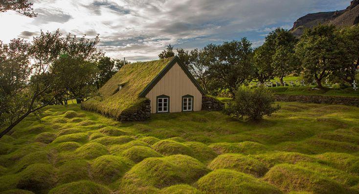 Op zoek naar een huisje IN de natuur?
