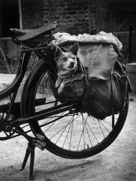 Paris 1958 Photo: Christer Strömholm