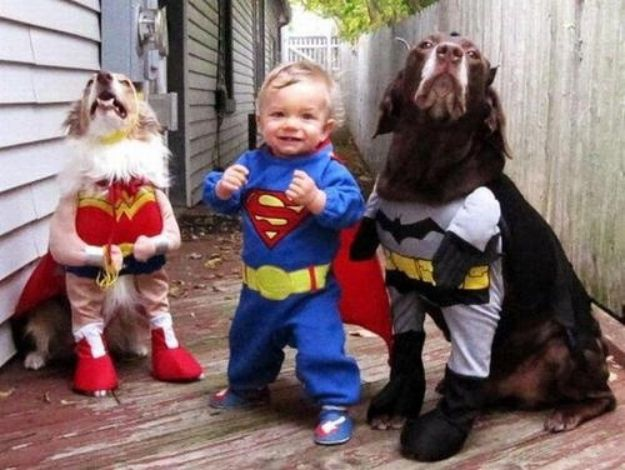 27 pictures of dogs being awesome w their nugget humans.     These heroes that will save the world with Superman at their side.