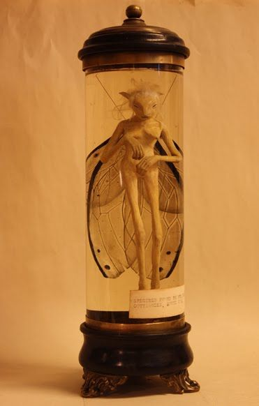 FAERIE Specimen found by Mrs. Rosalyde Wright, Cottingley. April 1874. (by Jacob Petersson).