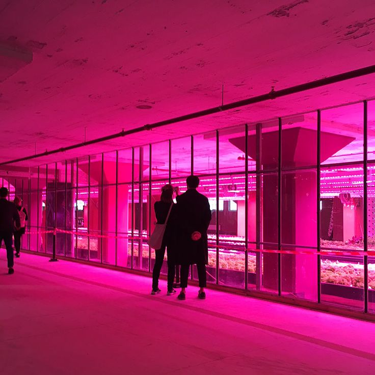 In Dutch Design Week 2017 part 2 we visit the Veem building and step into the future.