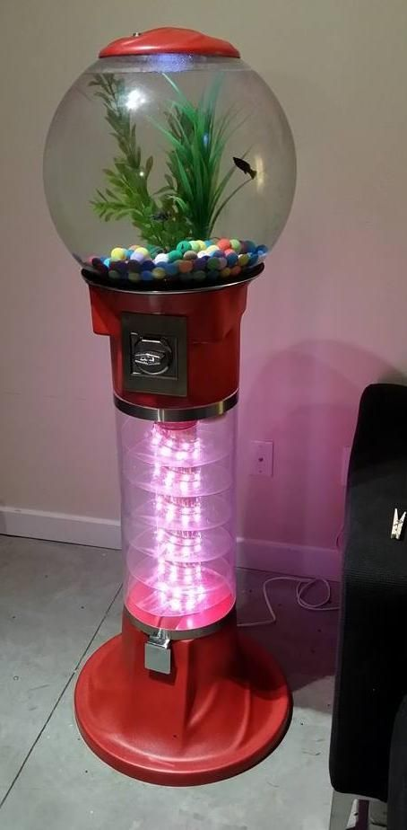 Cute and fully functional bubblegum machine fish tank DIY!