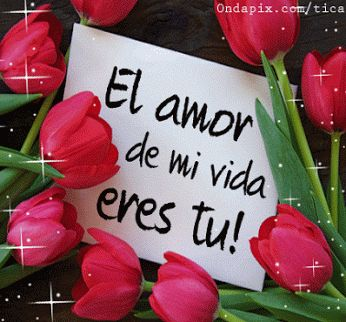 6 Imágenes de rosas con frases de amor con movimiento acompañadas lindos corazones
