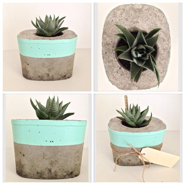 Mint and concrete, what a combination! Loving this new pastel colour. This planter is now available at @dowrystore #saltyshack #mint #concreteplanter #concretepot #concretedecor #succulent #handmade #dowrystore